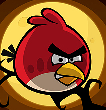 Ornithology: The Real Birds Behind The Angry Birds