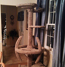 Star Trek Cat Tree: For Trekkies With Cats