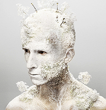 Human Landscapes: If Your Skin Grows Moss And Cows
