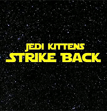 Jedi Kittens: The Battle Continues [Part 2]