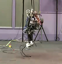 This Video Shows That Robots Will Outrun Us With Ease!