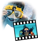 Sub Aquatic Snapshots!