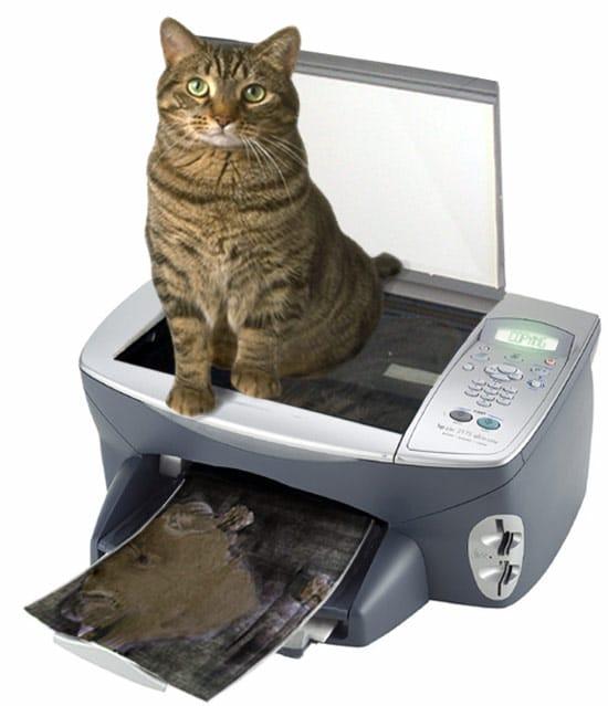 Don't Be a Copy Cat!