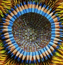 Extraordinary Pencil Sculptures