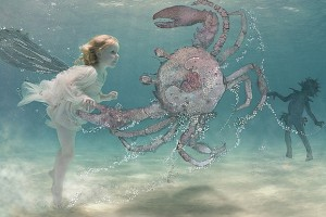 35-crab-copyright-zena-h