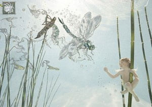 9-fly-copyright-zena-h