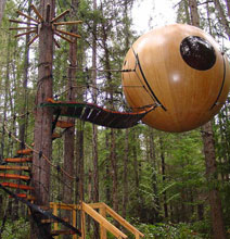 Escape From It All   A Tree House For Adults