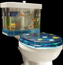 Creative Toilet Designs | Bathroom Inspiration