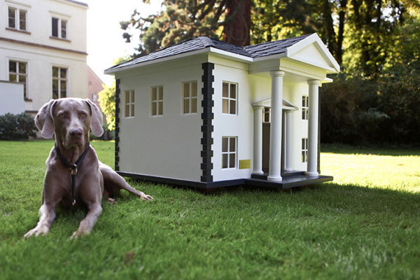 These Doghouses Are Nicer Than My House Bit Rebels