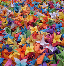 He Folded 10 Origami Flowers Each Day For 3 Years!