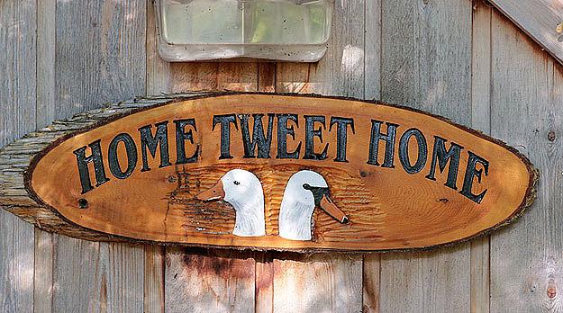 Twitter Rule for 2011