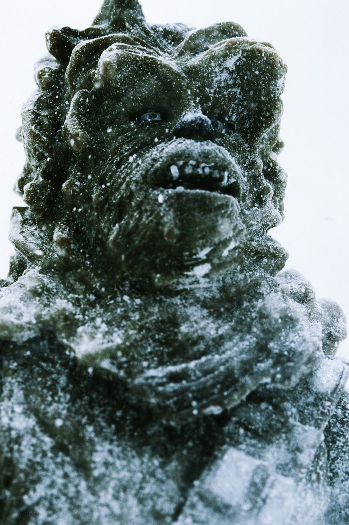 Chewbacca In Winter Snow Blaze