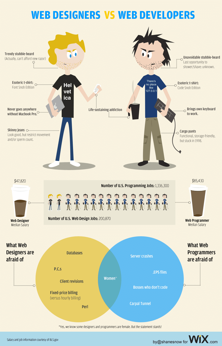 Web Designer And Developer Infographic