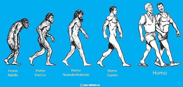 The-Evolution-Of-Man-Illustrations