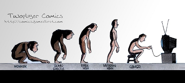 essay on the evolution of man