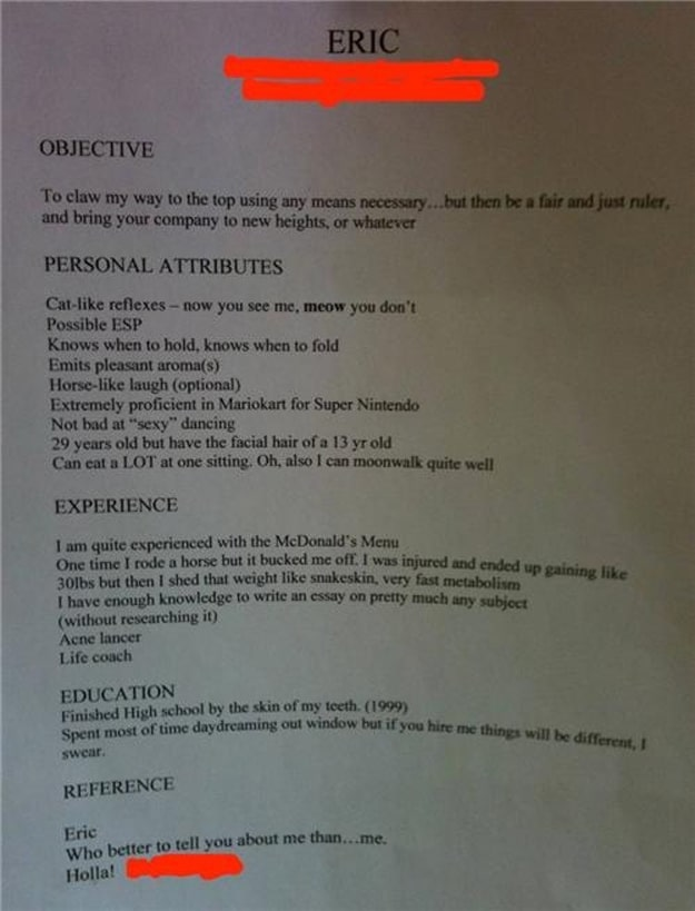 Creative or Stupid Job Resume