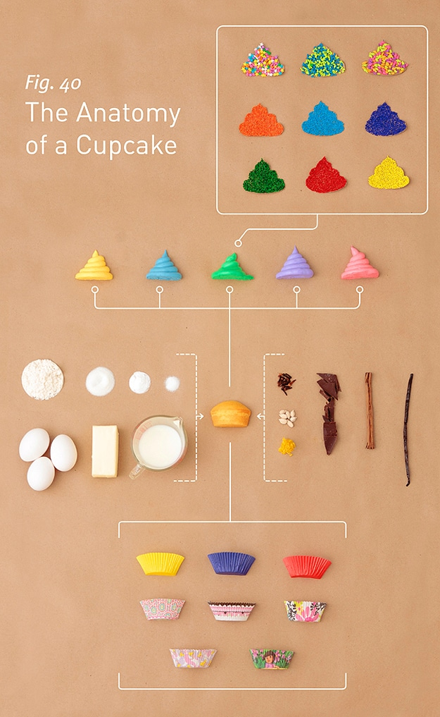 Cupcake Diagram and Illustration