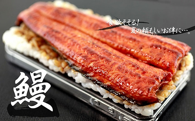 Japanese Design: Deliciously Realistic Unagi iPhone Cover