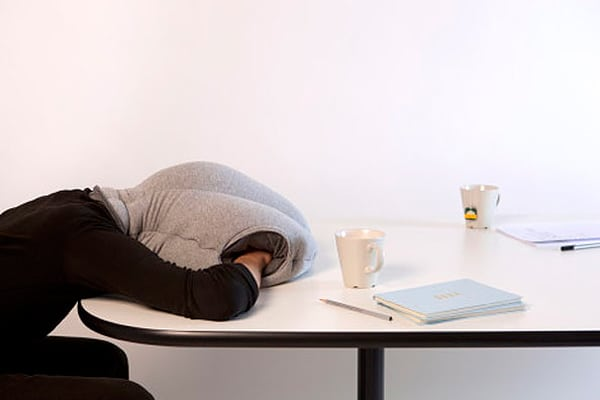 Workaholic's Dream: The Ostrich Power Nap Pillow