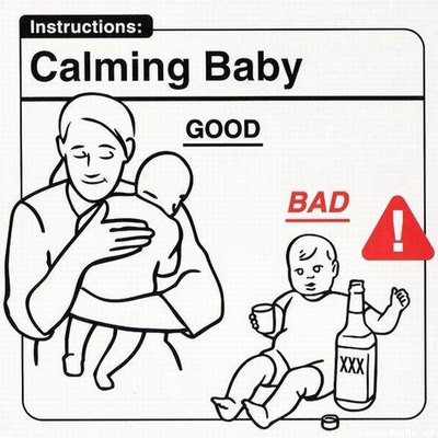 Parenting Guide Instruction Manual Help