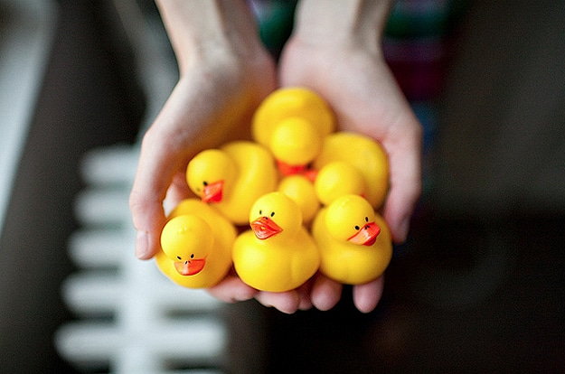 Yellow Rubber Ducks In Puddles