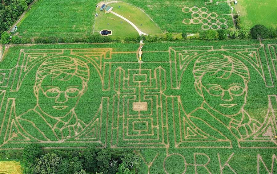 Harry Potter Fan Creates Insane Portrait In Corn Field