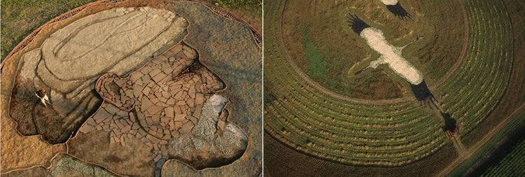 Insane Farm Crop Portrait Designs