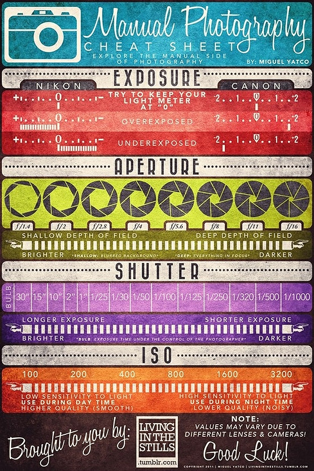 Manual Photography Settings Infographic Poster