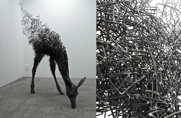 Perceive Life Differently: Oddly Lifelike Wire Sculptures