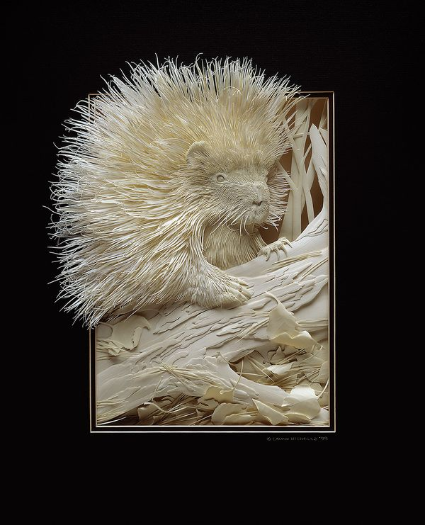 Unbelievable Paper Art: Wildlife In Insane Detail