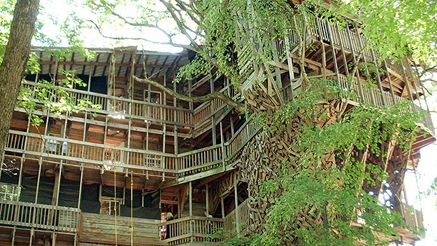 The world 39 s largest treehouse a mansion in a tree bit for The world s biggest house