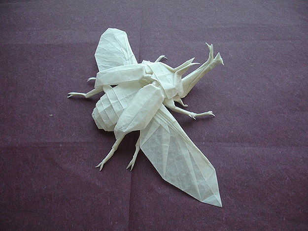 Paper Fold Insect Art