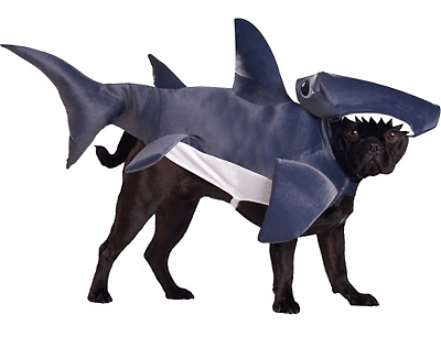 Dog Cosplay: 12 Ridiculously Amazing Pet Costumes