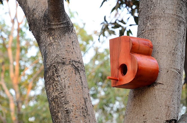 Beautifully Designed Birdhouses Typography