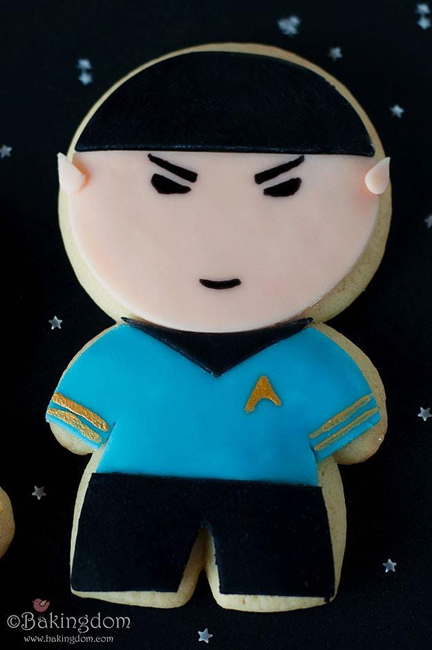 Trekkies Star Trek 45 Years
