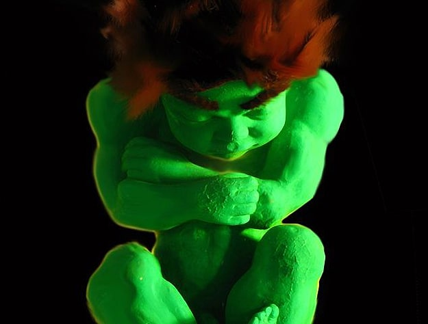 Incredible Hulk In The Womb