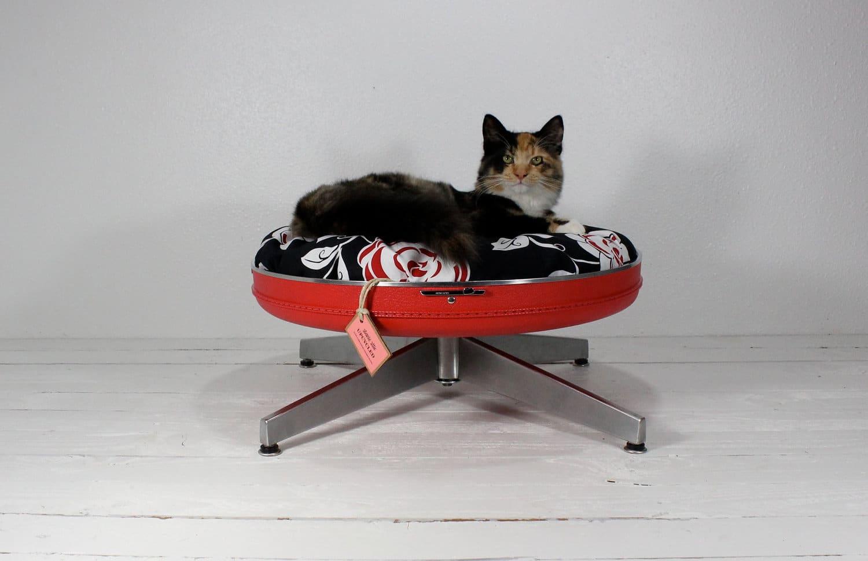 Евгений котов мебель своими руками