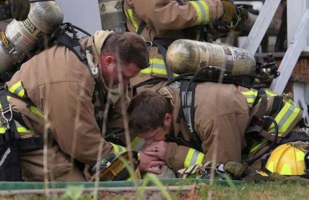Firemen Rescuing Animals Saving Lives