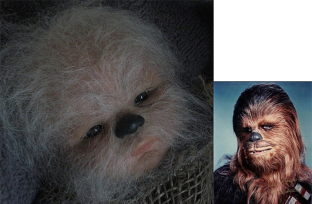 Chewbacca Reborn As A Fugly Baby Doll