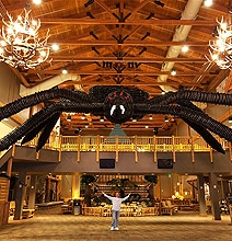 Largest Balloon Sculpture In The World Is A Spider