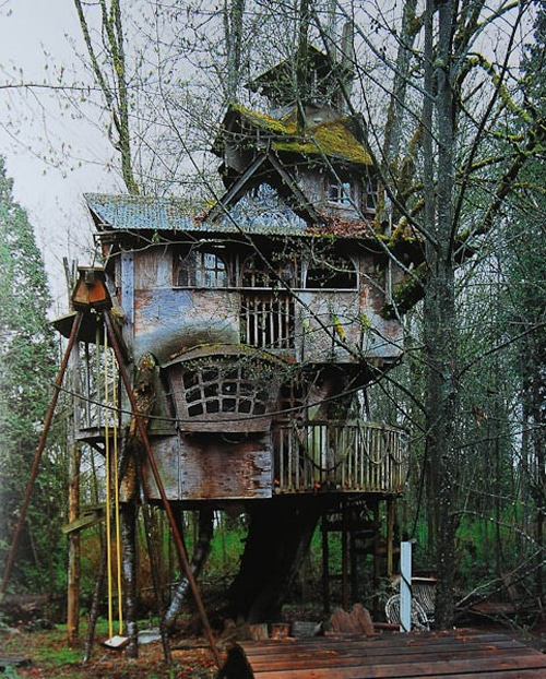 Creative Adult Treehouse Designs