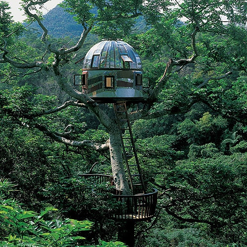 Dream Like A Child: 10 Fantasy Treehouses Around The World
