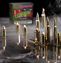 Zombie Ammo: Designed To Kill Even The Gnarliest Zombies