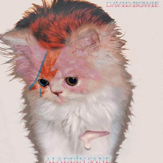 Classic Album Covers Redesigned With Cute Kittens [12 Pics]