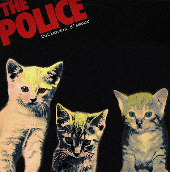 Cats On Record Albums