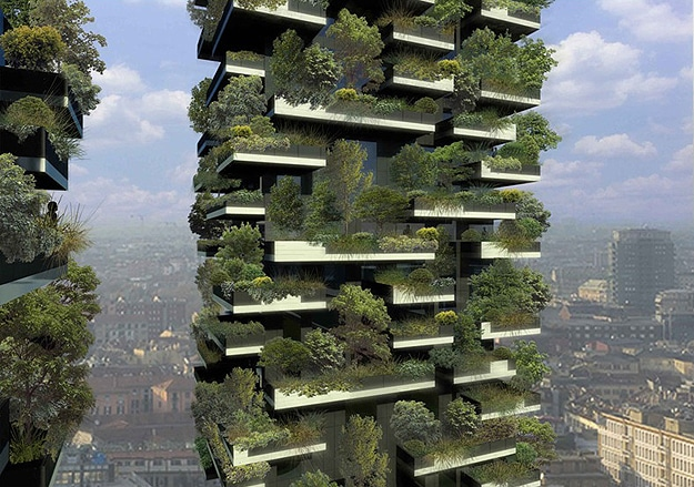 Forest Grows On A Building