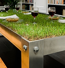 Inspiration: An Indoor Picnic Table Created With Real Grass