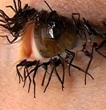 Bizarre Beauty: Fake Eyelashes Created From Dead Fly Legs