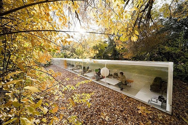 Work Alongside Nature: An Inspiring Office Building In The Woods