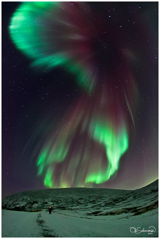 Aurora Borealis Light Up Sky